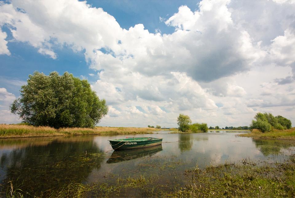 Die Elbeauen in der Altmark